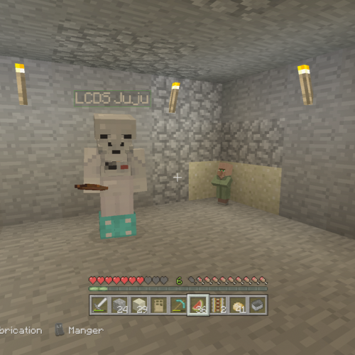 GALERIE D'IMAGE INGAME Minecraft 4